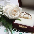 Wedding rings and rose — Stok fotoğraf