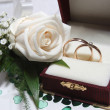 Wedding rings and rose — Stock fotografie