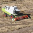 Stock Photo: Machine harvesting the corn field