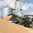 Stock Photo: Unloading grain