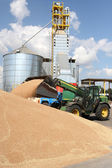 Unloading grain — Stock Photo