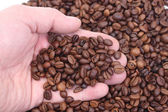 Handful of coffee — Stock Photo