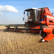 Stock Photo: Machine harvesting