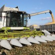 Стоковое фото: Combine harvesting a corn crop