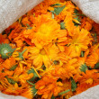 A bag with calendula — Stock Photo