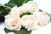 Bouquet of cream roses — Stock Photo