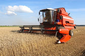 Machine harvesting — Stock Photo