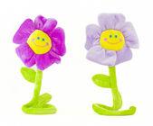 Deux fleurs souriants — Photo