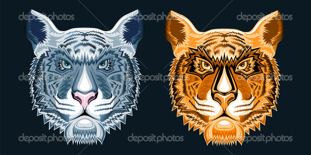 The heads of the tigers on the background — Stock Vector #2002821