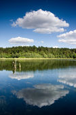 Reflection on the water — Stock Photo