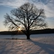 Foto Stock: Winter sunset