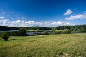 Zielony łąka — Zdjęcie stockowe