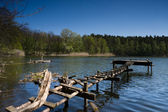 Pier made from branches — Stock Photo
