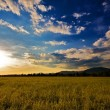 Cloudy sky to sunset - Stock Photo