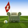 Swiss soccer fun — Stock Photo