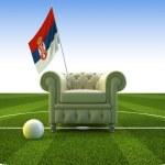 Serbia soccer fun — Stock Photo #2490217