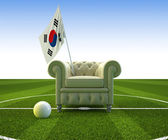 South Korea soccer fun — Stock Photo