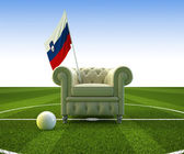 Slovenia soccer fun — Stock Photo