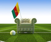 Cameroon soccer fun — Stock Photo