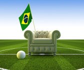 Brazil soccer fun — Stock Photo