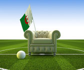 Algeria soccer fun — Stock Photo