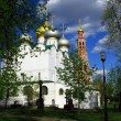 Novodevichiy monastery — Stock Photo #2006422