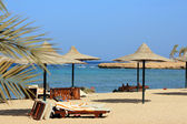 Egypt beach — Stock Photo