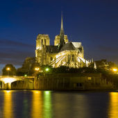 Kostel notre dame v paříži — Stock fotografie