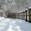 Stockfoto: Snow in countryside