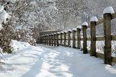 田舎を雪します。 — ストック写真