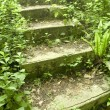 Green stairway — Stock Photo