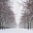 Stockfoto: Snow in Paris