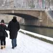 Foto de Stock  : Snow in paris - having walk