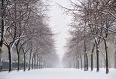 雪在巴黎 — 图库照片