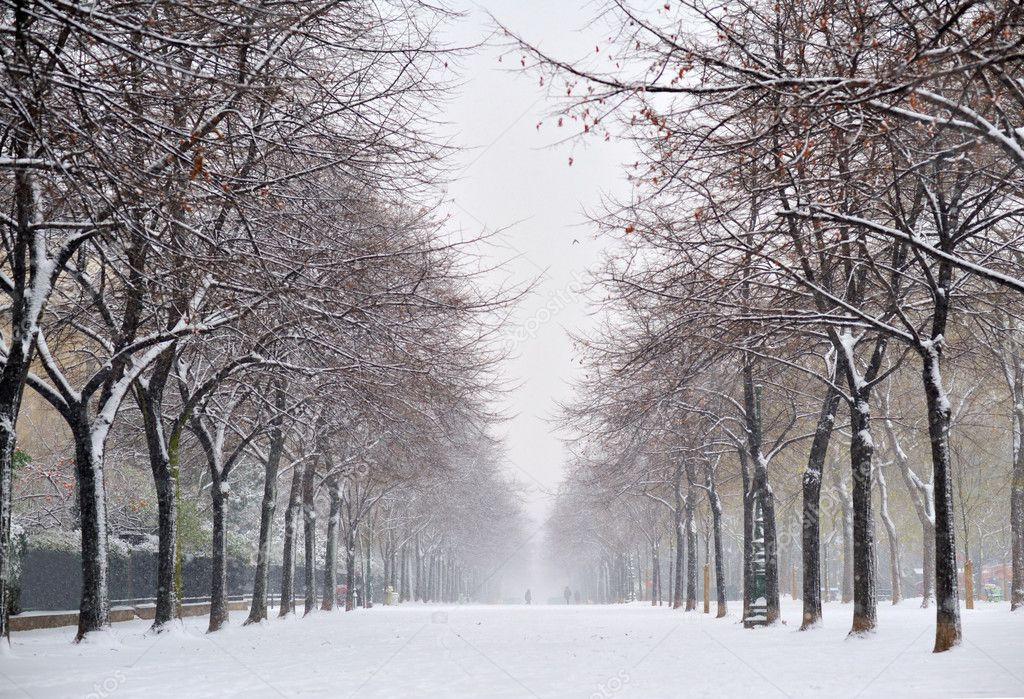 Snow in Paris — Stock Photo #1982801