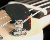 Guitar Tuning Peg — Stock Photo