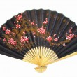 Chinese fan on a white background — 图库照片