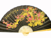 Chinese fan on a white background — Stock Photo