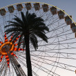 Stock Photo: Giant wheel and palm tree