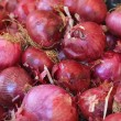 Red onion closeup — Stock Photo