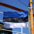 Stock Photo: Estoniflag on ship mast