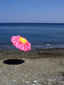 Exclusive parasol on the beach — Stock Photo
