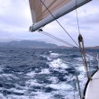 Sailing with good wind - Stock Photo