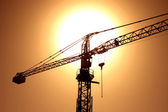 Sunset with crane — Stock Photo