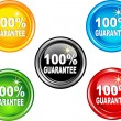 Button  100 % guarantee — Stock Vector