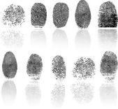 Fingerprint — Stock Vector