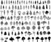 Baum silhouetten — Stockvektor