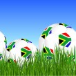 World Cup South Africa balls on the gras — Stock Vector