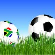 World Cup South Africa balls on the gras — Stockvektor