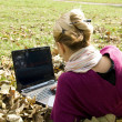 Stock Photo: Working on computer in the nature